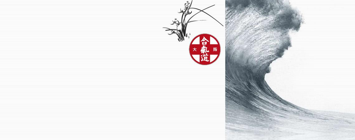 Les cycles d'Aïkido à Lyon proposé par l'Institut d'Aïkido