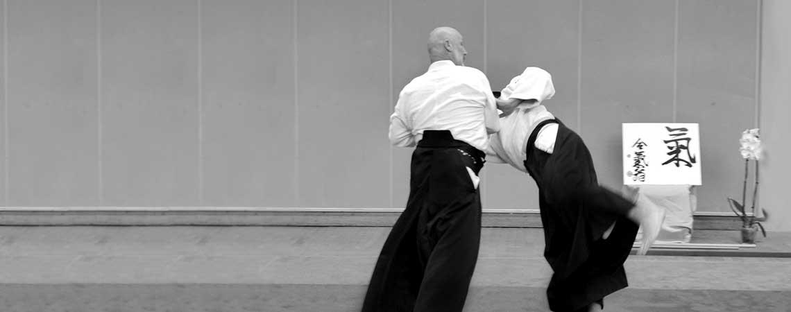 Journée d'Aïkido dirigée par LEMAN Senseï – le 2 juin 2019